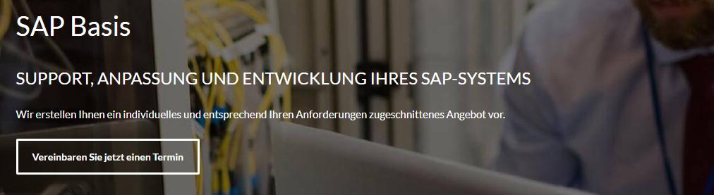 sap basis support anpassung und entwicklung