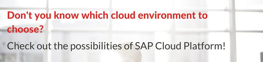 sap cloud platform possibilities