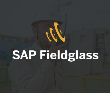 SAP Fieldglass