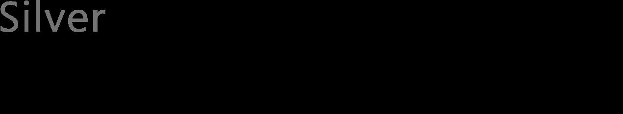 Silver Microsoft Partner - Apollogic